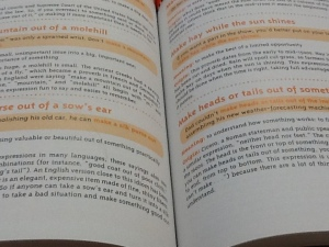 vocab books